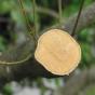Serrucho japonés Silky Natanoko de hoja recta (300 mm - 7,5 dientes/30 mm) con funda resistente de polipropileno, clip para cint